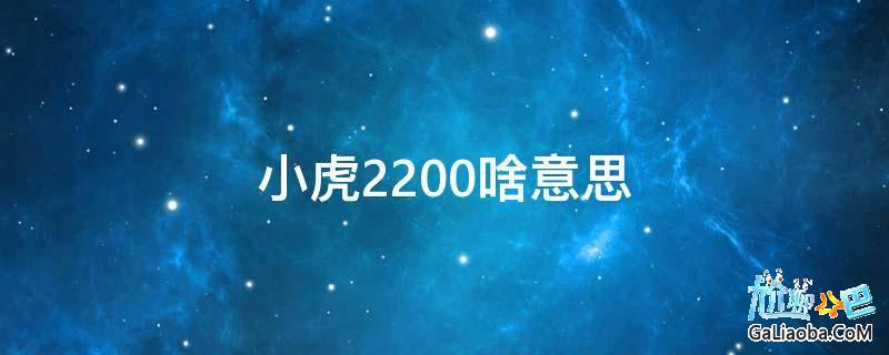 小虎2200啥意思