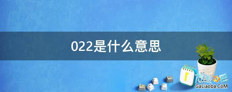 022是什么意思