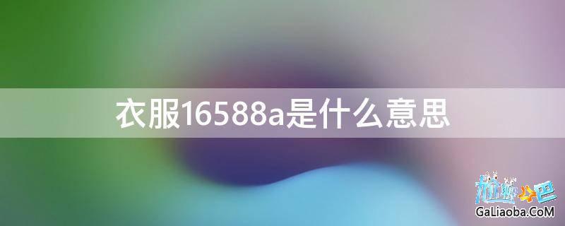 衣服16588a是什么意思